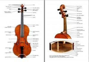 la nomenclatura del violino